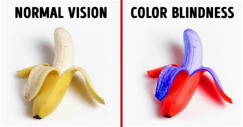 different types of color blindness how with different kinds of color blindness see the