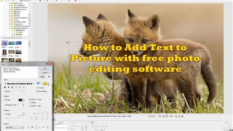 How To Add Text To Picture Using Free Photo Editing