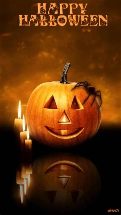 Halloween Happy Pumpkin Bright