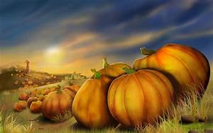 Pumpkins With Fall Leaves Royalty Free Stock P #2259 Hd ...