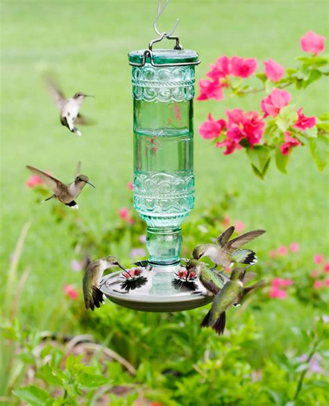 attracting birds to your feeder yard envy