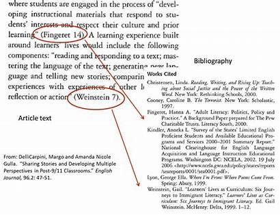 Mla Citation Format Quotes Citing Proper Websites
