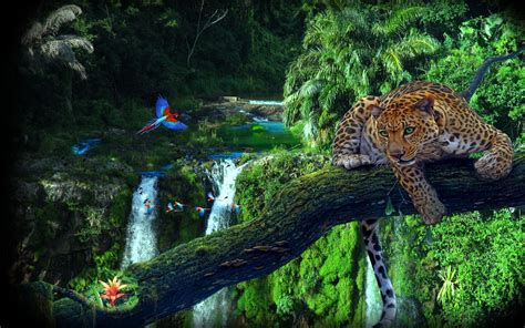 Waterfalls Wallpaper With Animals - nature animals forest waterfall macaws vignette