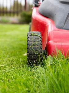 What Is The Ideal Height To Cut The Grass