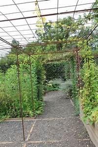 Pergola Pour Plante Grimpante : s 39 am nager un espace pour plantes grimpantes avec du fer ~ Premium-room.com Idées de Décoration