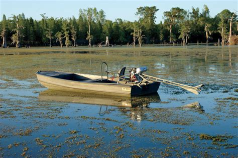 Small But Powerful Boat by Great Boats And Mud Motors For Waterfowlers Next Season Wi