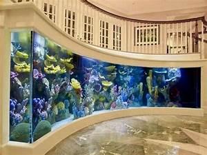 Fish Tank Decoration At Home #12 Cool Fish Tanks Designs ...