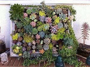 Hängende Gärten Selbst Gestalten : die 25 besten ideen zu sukkulentengarten auf pinterest sukkulenten pflanzen und vermehrungs ~ Bigdaddyawards.com Haus und Dekorationen