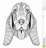 Basset Stilizzato Stilisiert Haupt Hondenhoofd Stileerde Mandalas Freehand Bassett Ornate sketch template