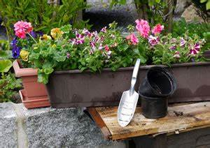Kübel Bepflanzen Winterhart : beste pflanzzeit von blumen f r blumenk sten und balkone ~ Whattoseeinmadrid.com Haus und Dekorationen