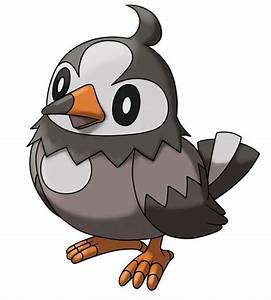 396. Starly | All 649 Pokemon So Far In Order | Pinterest