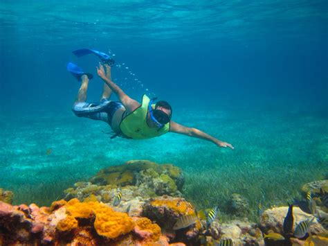 cozumel private snorkeling tours cozumel cruise excursions