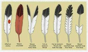 Signification Plume Noire : white wolf eagle feathers and the sacred meaning to lakota people ~ Carolinahurricanesstore.com Idées de Décoration
