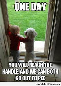 funny dog quotes - Google Search | funny | Pinterest ...