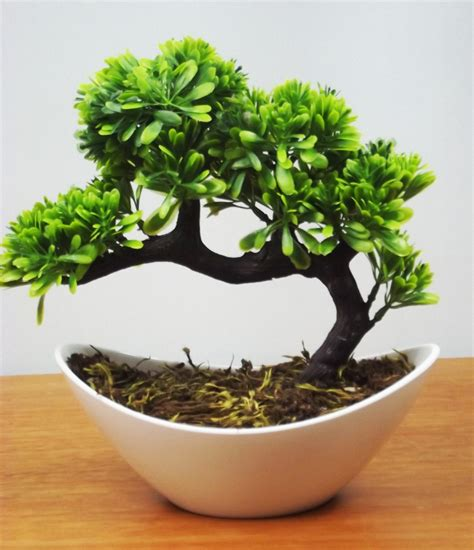 vaso da bonsai 10 bonsai vaso branco mini 193 rvores artificial plantas r