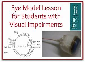 Eye Model Lesson