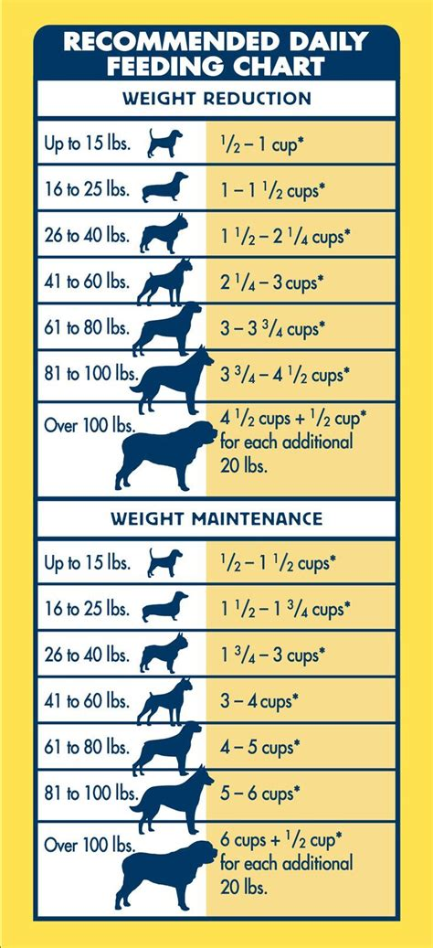 blue life protection formula healthy weight      dog lose weight