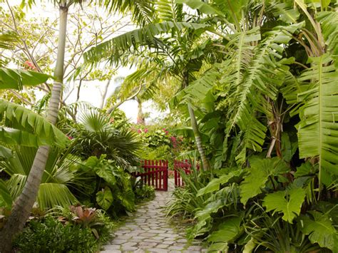 golden rock inn nevis west indies