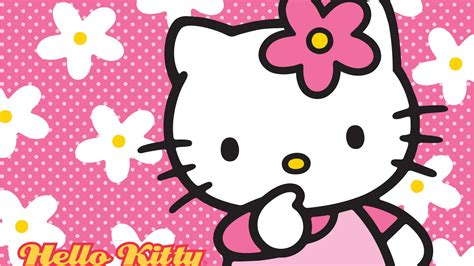 kitty wallpaper  floral pink background hd