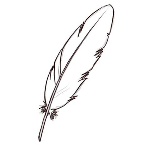 plume d oiseau dessin comment dessiner une plume d oiseau dessin en 2019