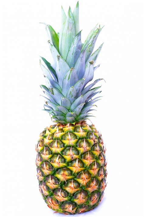 Pineapple Free Stock Photo Public Domain Pictures