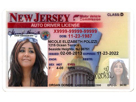 New Jersey Driver's License Editable Psd Template Download