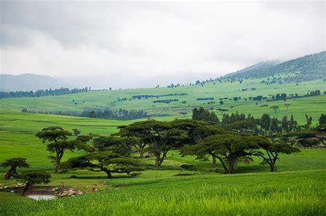 Landscape, Bale plateau, Ethiopia