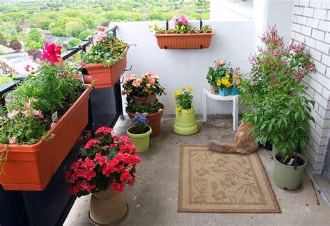 Balcony Garden Tips  The Royale