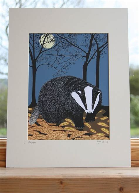 Nocturnal Animals Mounted Print By Bird ...