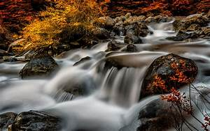 Stream, River, Rocks, Leak, On, Water, Buzzing, Autumn, Trees, Bushes, With, Red, And, Yellow, Leaves, Desktop
