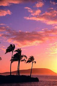 Hawaii Tropical Sunrise