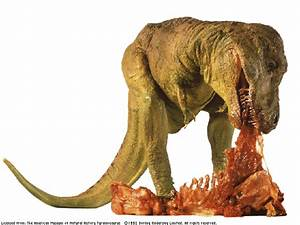 el tiranosaurio rex era herbivoro Taringa!