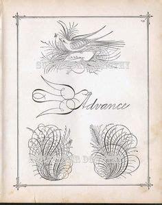 calligraphy images  pinterest   penmanship calligraphy  illuminated