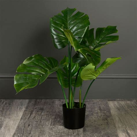 Potted Artificial Monstera Plant - Windsor Browne