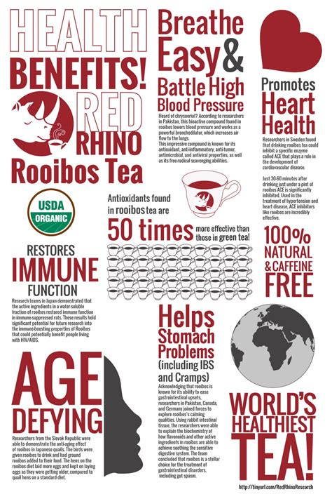 Benefits Of Rooibos Tea Longevity