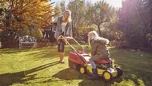 Rasen Düngen Herbst : den rasen im herbst d ngen reparieren und pflegen mdr de ~ Watch28wear.com Haus und Dekorationen