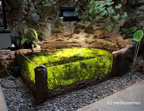 amazing fish ponds amazing 700g indoor sunken pond except it would look even nicer without all the quot paraphernalia