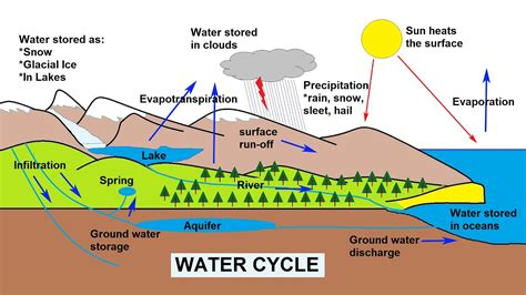 water cycle explained youtube
