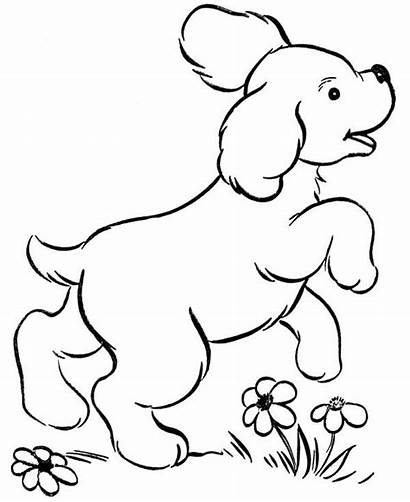 Coloring Dog Running Pet Happy Around Sky