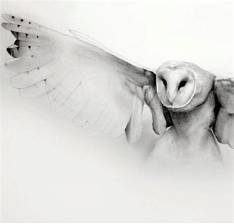flying barn owl drawing flying barn owl pencil drawing print by