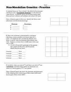 Blood Inheritance Chart Worksheet Multiple Allele Crosses