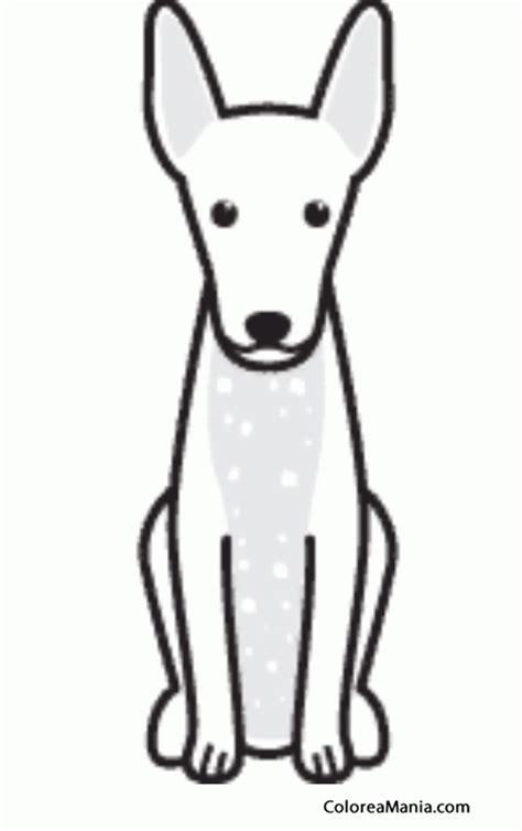colorear silueta perro xoloitzcuintle  xolo animales