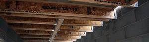 structural timber With structural floor joists