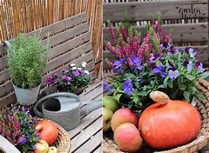 Balkonbepflanzung Im Herbst : herbst am balkon garten fr ulein der garten blog ~ Markanthonyermac.com Haus und Dekorationen