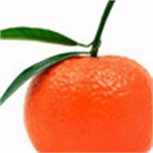 Tangerine Quote... Tangerine Character Quotes