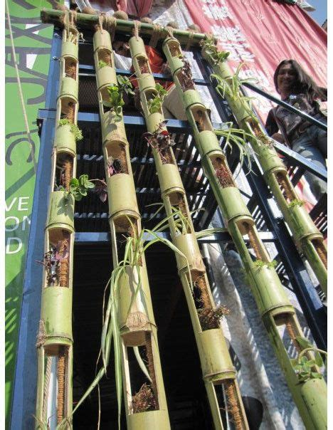 Bamboo Vertical Garden by Vertical Gardening With Slotted Bamboo Bamboo