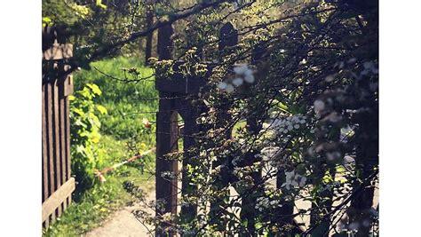 Der Comenius Garten Berlin by Comenius Garten Ausflugsziele Auf Visity De