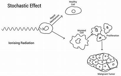 Stochastic Effects Radiation Deterministic Cell Ionising Carcinogenesis