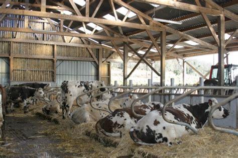 lycee agricole de la baie du mont michel les 233 l 232 ves de seconde pro pa 224 la d 233 couverte de l entreprise agricole lyc 233 e agricole de la