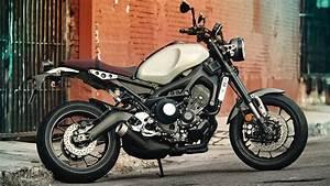 2017 Yamaha Xsr900 Motorcycle Uae U0026 39 S Prices  Specs